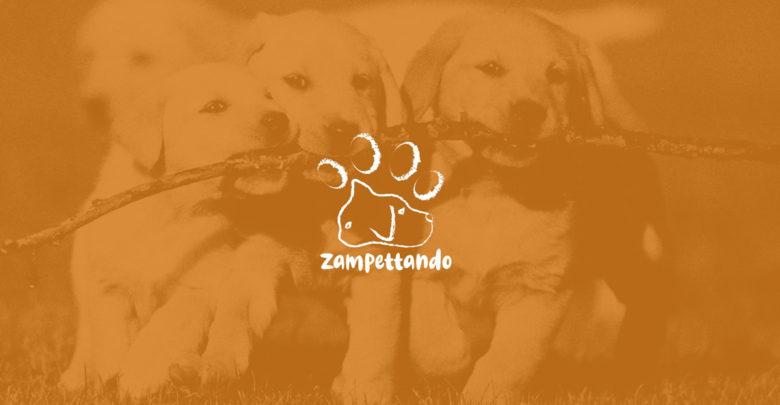 Il negozio di animali Zampettando a Ragusa